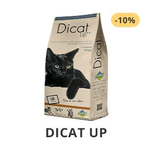 Dicat Up kjøpe i norsk dyrebutikk
