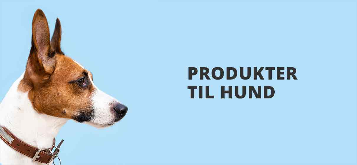 Hundeutstyr butikk | Tilbehør til hund
