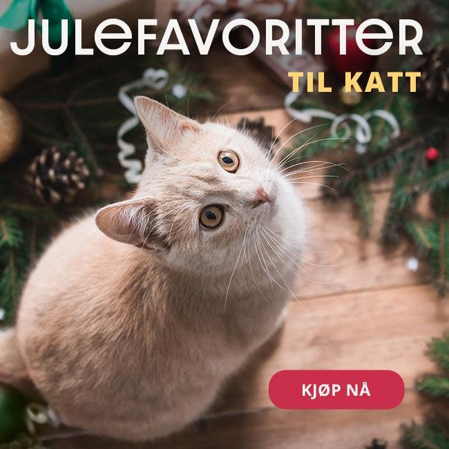Dyreutstyr dyremat kampanje til katt