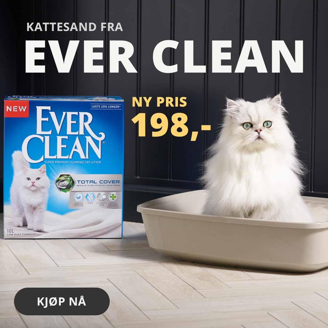 Ever clean kattesand