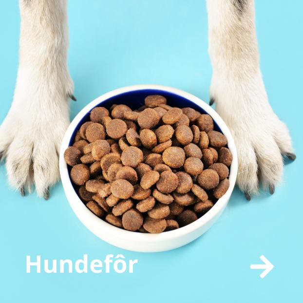 Kjøp hundefôr til hund
