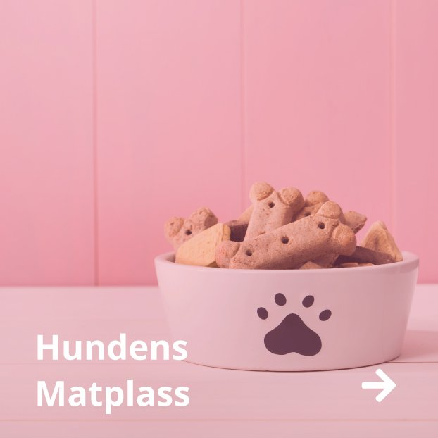 hundens matplass