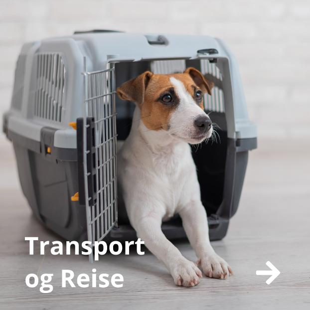 Hund transportbur hundebur