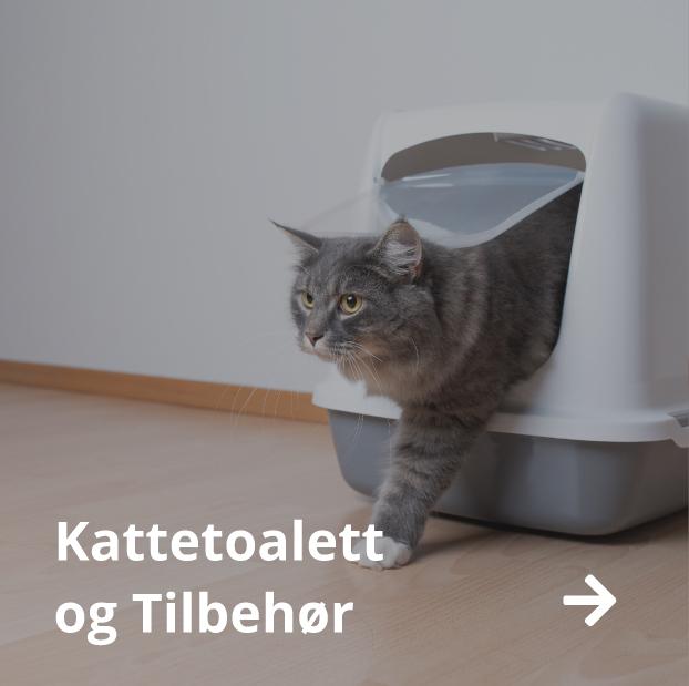 Kattetoalett katt tilbehør