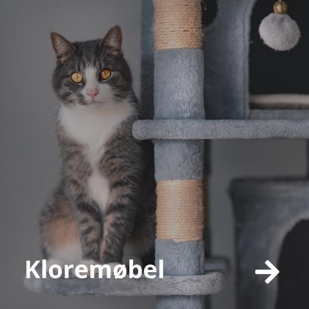 Kloremøbel katt