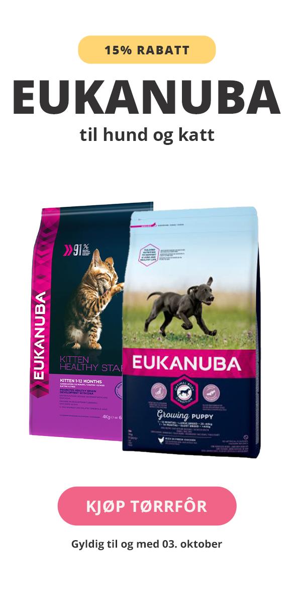 Eukanuba tørfôr til hung og katt